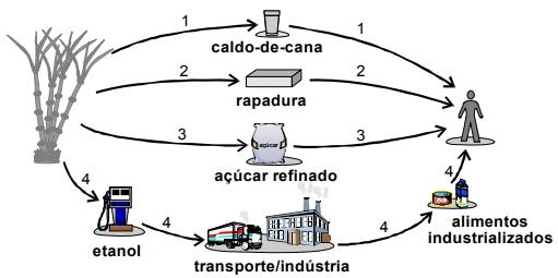 O esquema abaixo apresenta quatro alternativas dessa utilização.