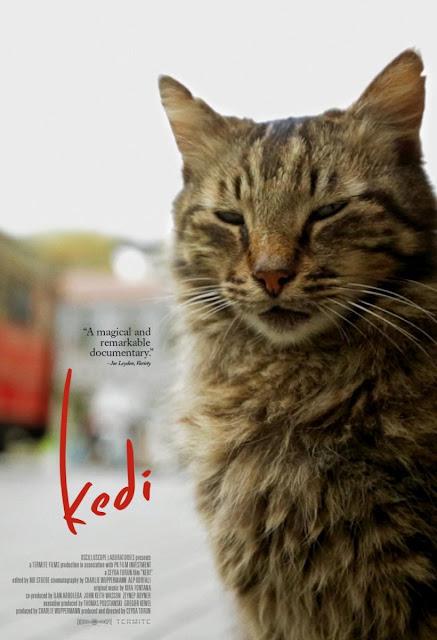 Poster de la película documental Kedi, Gatos de Estambul