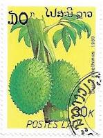 Selo Durião