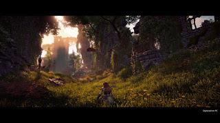 screenshot Horizon Zero Dawn