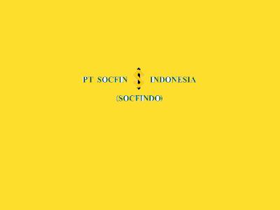 Lowongan Kerja PT Socfin Indonesia (SOCFINDO)