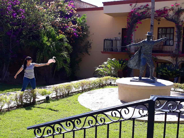 Girl and flamingo takes on Zoro at Hotel Posada del Hidalgo