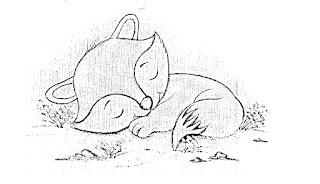 desenho de raposinha dormindo para pintar