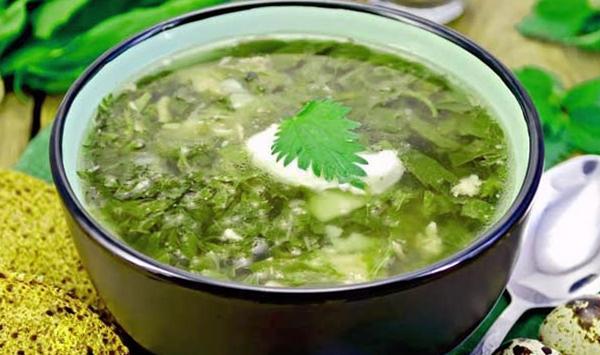 холодный суп из зелени и ботвы