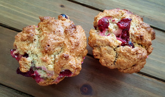 Cranberry Orange Muffins - Dairy Free & Egg Free - Great recipes for people with food sensitivities