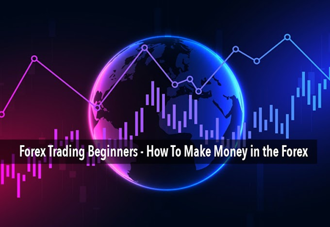 Forex Trading Beginners - How To Make Money in the Forex?
