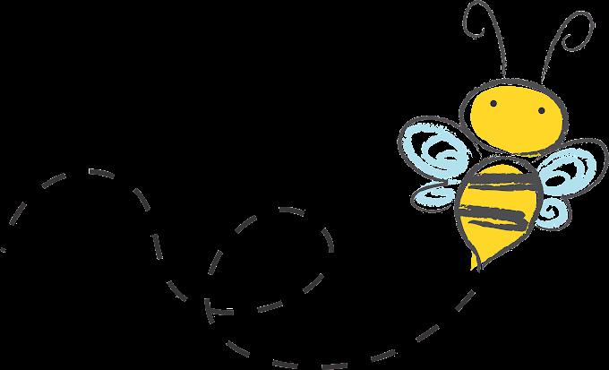 BEE Coin Promo Code