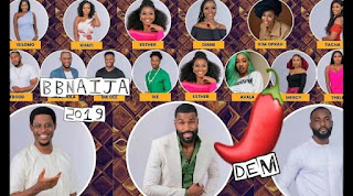 BBNaija: Organisers Announce New twist, Cancel Eviction This Week