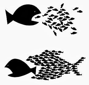 Resultado de imagen para peces unidos
