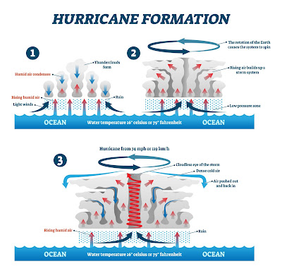 how hurricane forms