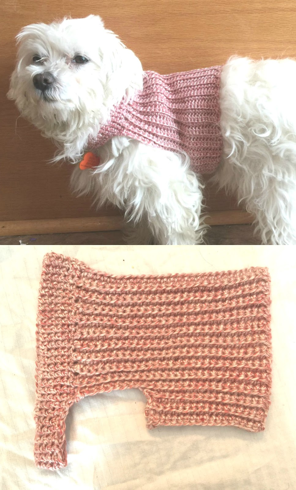 Messy, Beautiful, Fun: DIY Crochet Dog Sweater