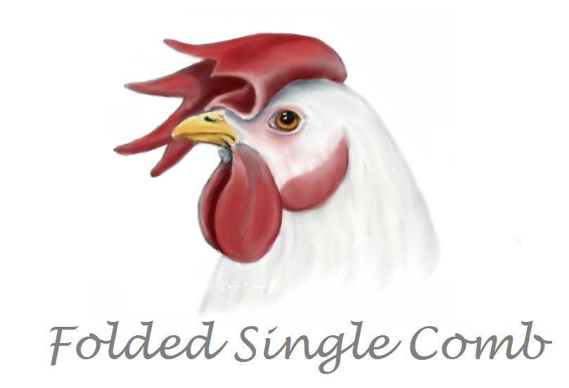 Russian orloff chicken