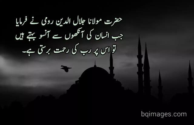 Quotes in Urdu by Maulana Jalaudin Rumi