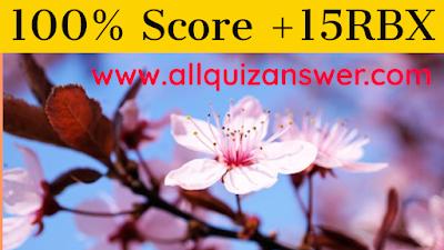 Cherry Blossom Quiz Answers 100% Score  Quiz Riddle