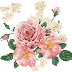 Water Colour Flower PNG 23
