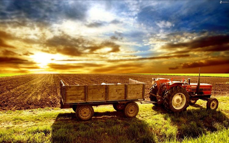 Inmuebles rurales, crece el interés y se negocian precios con bajas del 20%