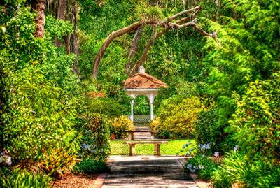 Que hacer en orlando sin ir a los parques - Harry P. Leu Gardens