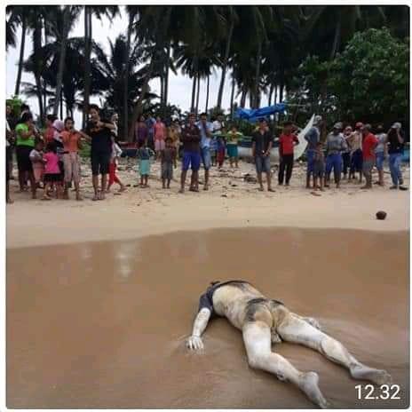 Identifikasi Temuan Mayat di Pantai Martanda, Polres Tanggamus Terjunkan Inafis