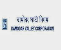 Damodar Valley Corporation Recruitment 2013