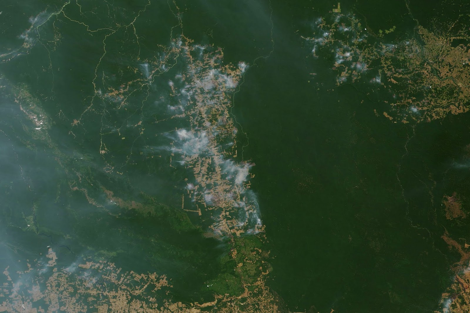 亞馬遜雨林大火