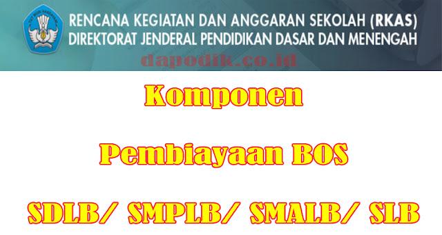 Komponen Pembiayaan BOS SDLB/ SMPLB/ SMALB/ SLB - Rencana Kegiatan Dan Anggaran Sekolah (RKAS) Dikdasmen Kemdikbud