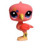 Littlest Pet Shop Multi Pack Flamingo (#2221) Pet