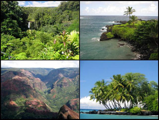 Akaka Falls, Kona, Waimea Canyon, Kauai, Maui, Hawaii, Hana Bay, rainforest, rain forest, waterfall, ocean, sea, green, blue