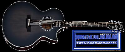 gitar akustik schecter synyster gates