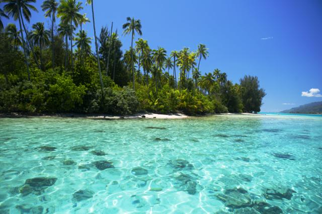 Moorea é uma ilha vulcânica na Polinésia Francesa