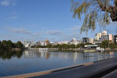 大濠公園(福岡市中央区)の池の様子。貸しボートもある。