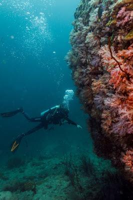 Foto van de duikplek ´Stonehenge´ op Ko Lipe Island