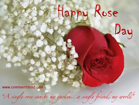 Heart Touching Wallpaper With Quotes In Malayalam Rose Day Special I M So Lonely