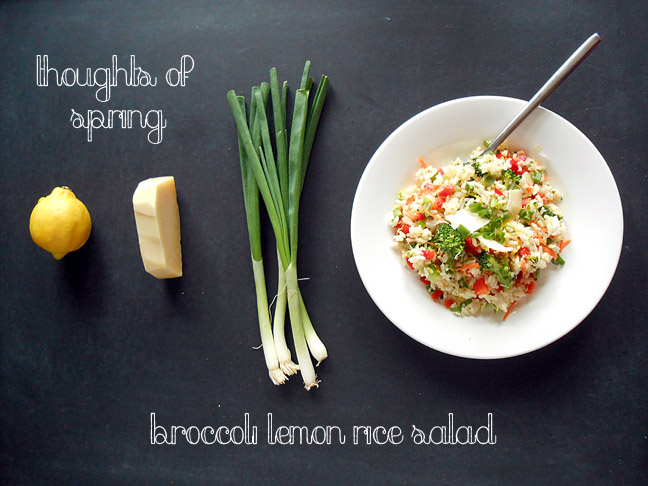 Meatless Monday: Broccoli Lemon Rice Salad
