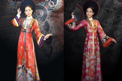 Vietnamese Traditional Special  Costume