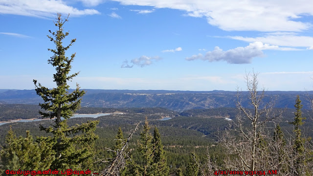 Pike National Forest Wilderness area