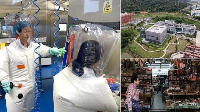 Asal Virus Corona Benar dari Laboratorium Virologi China, AS Tunjukkan Bukti Terbaru