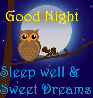 good night sweet dreams birds