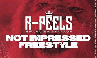 [feature]R. Peels - Not Impressed (Diss Song)