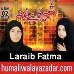 http://www.humaliwalayazadar.com/2017/10/laraib-fatma-nohay-2018.html