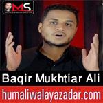 https://aliwalayazadar.blogspot.com/2020/08/baqir-mukhtiar-ali-sheedi-nohay-2021.html