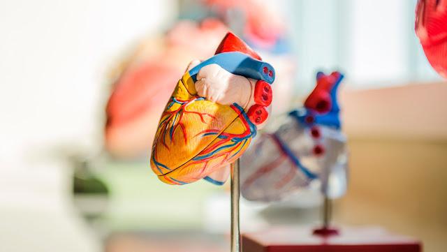 Formas severas de covid-19 pueden provocar daños en el corazón