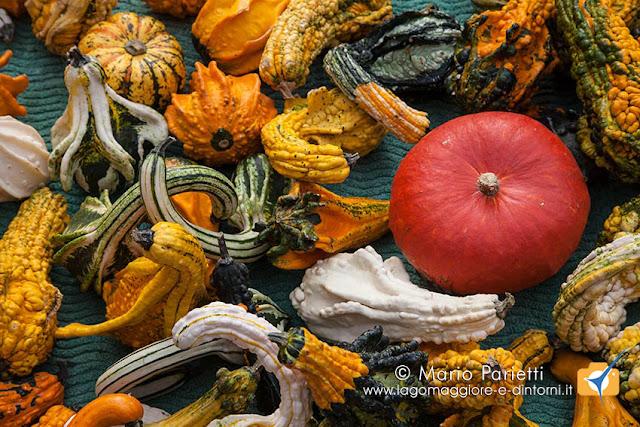 Feste e sagre sul lago Maggiore autunno 2017