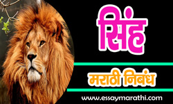lion-essay-in-marathi
