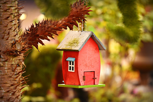 Smart Tips to Build a Birdhouse