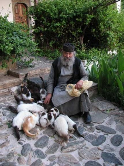 Greek Orthodox Monk Greek Orthodox cats Mount Athos