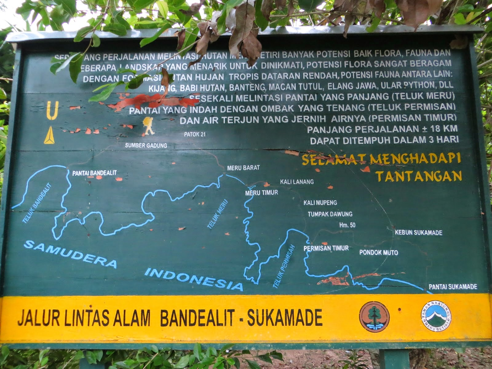 Jungle tracking di Taman nasional Meru Betiri