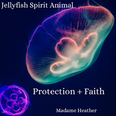 Jellyfish medicine