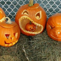Milford CT Pumpkins on the Pier Festival - carved jack o lanterns - Halloween New England
