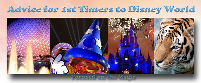 Advice for first time visitors to Disney World