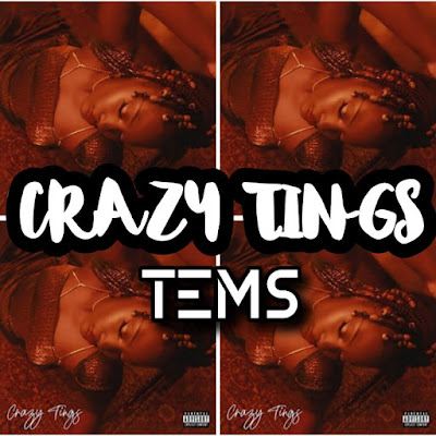 Tems' Song: CRAZY TINGS (Single Track) - Chorus: Crazy tings are happening If you need somebody's craze.. Streaming - MP3 Download